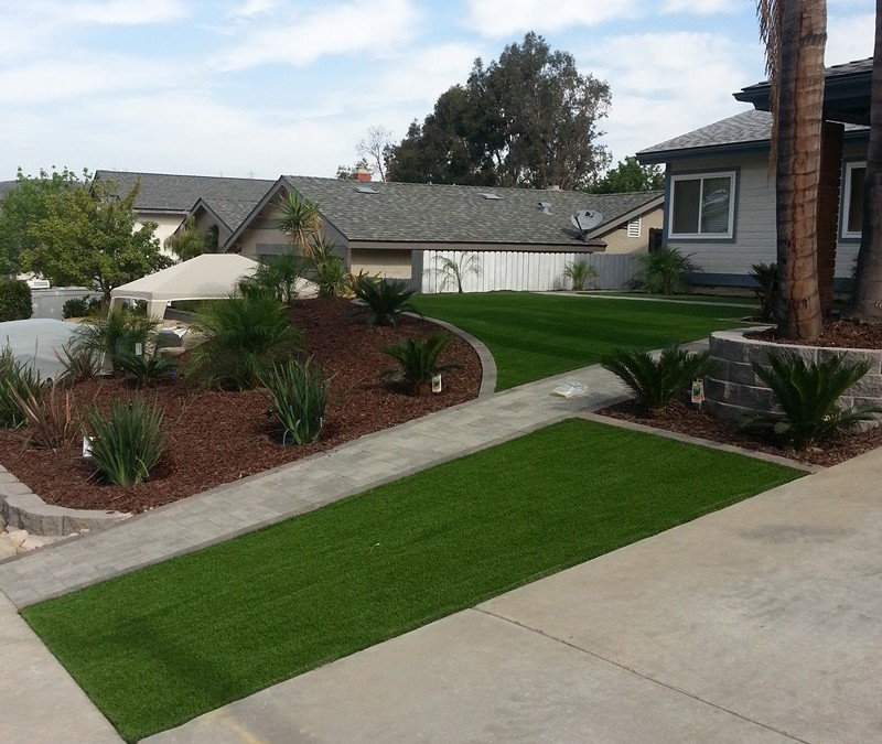 To turf or not to turf?